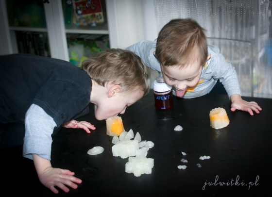 smakowe kostki lodu, julwitki.pl